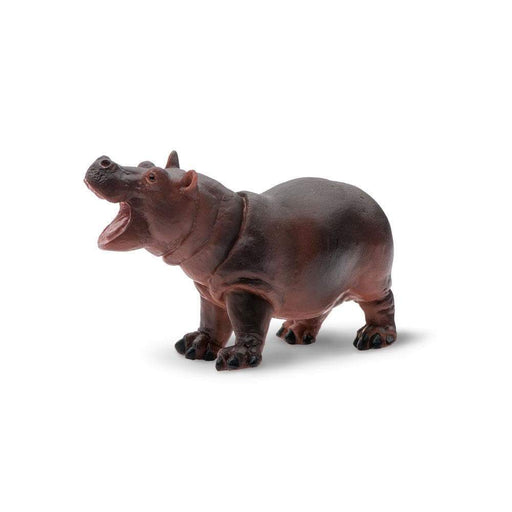 Hippopotamus Baby - Safari Ltd®