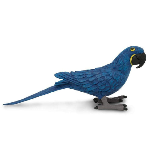 Hyacinth Macaw - Safari Ltd®