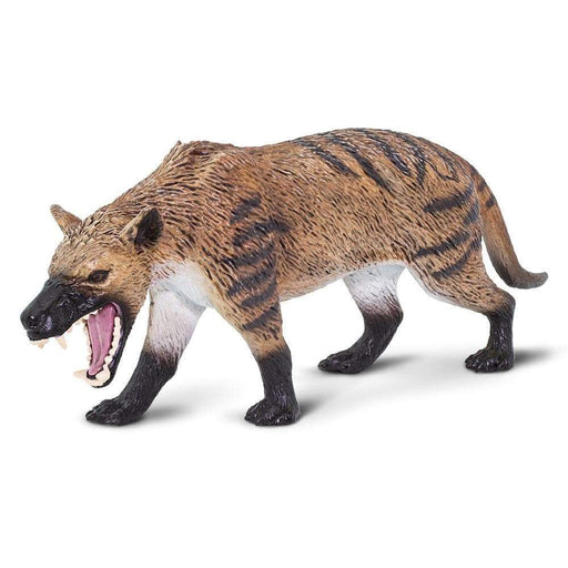 Hyaenodon Gigas - Safari Ltd®