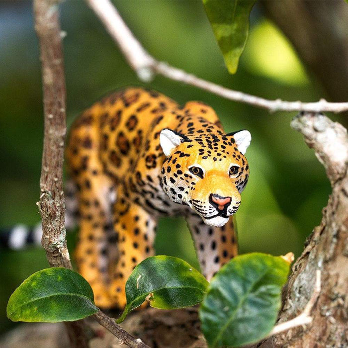 Jaguar - Safari Ltd®