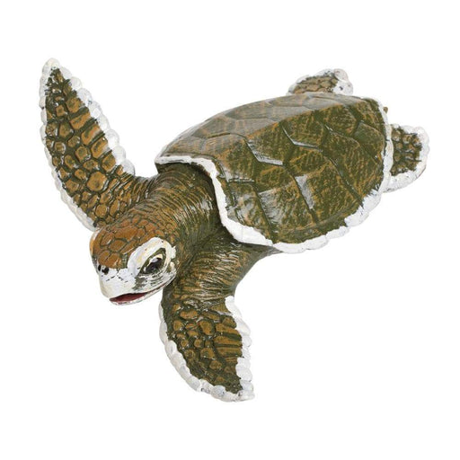 Kemp's Ridley Sea Turtle Baby - Safari Ltd®
