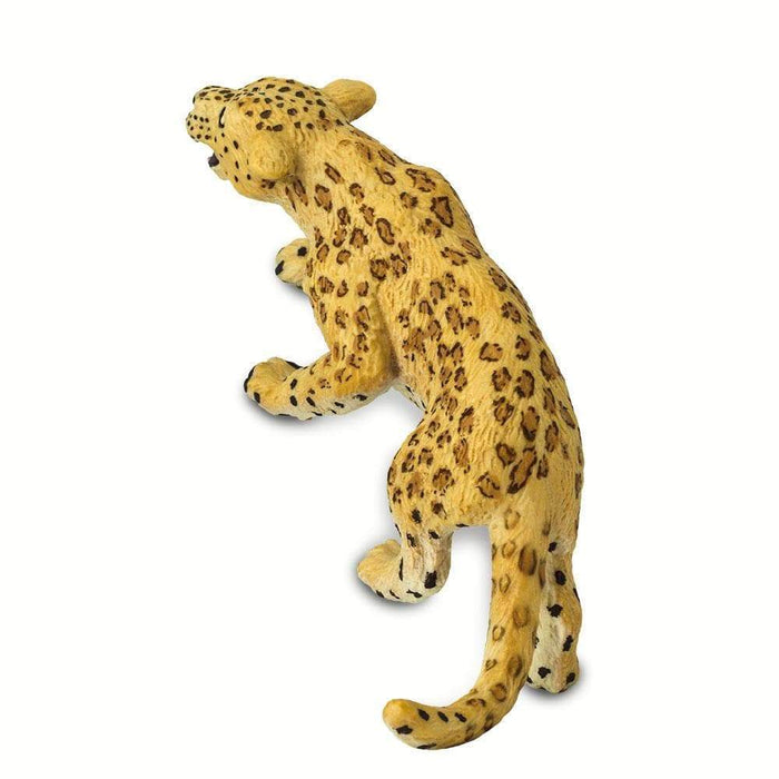 Leopard - Safari Ltd®