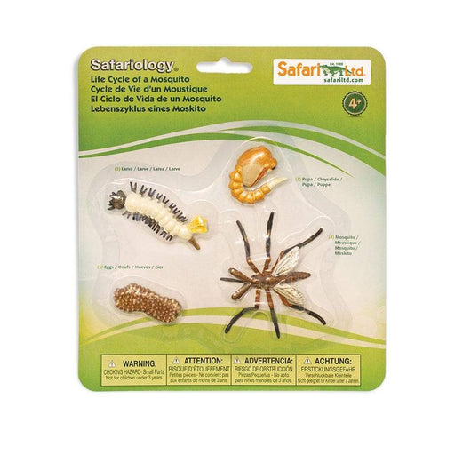 Life Cycle of a Mosquito - Safari Ltd®