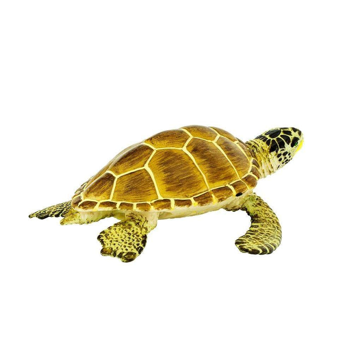 Loggerhead Turtle - Safari Ltd®