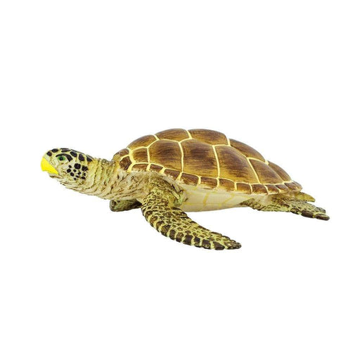 Loggerhead Turtle Toy - Sea Life Toys by Safari Ltd.