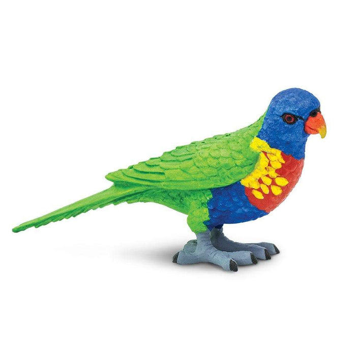 Lorikeet - Safari Ltd®