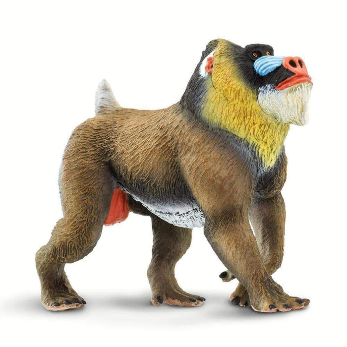 Mandrill - Safari Ltd®