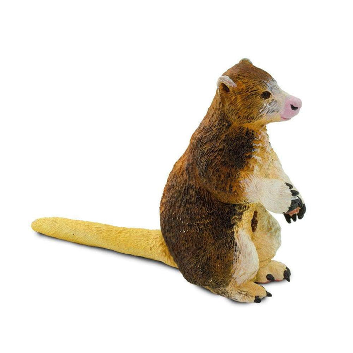 Matschie's Tree Kangaroo - Safari Ltd®
