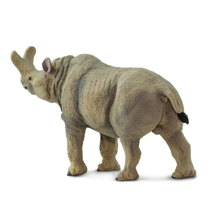 Megacerops Toy | Dinosaur Toys | Safari Ltd.
