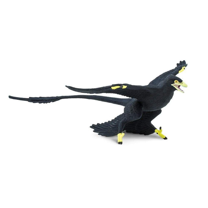Microraptor - Safari Ltd®