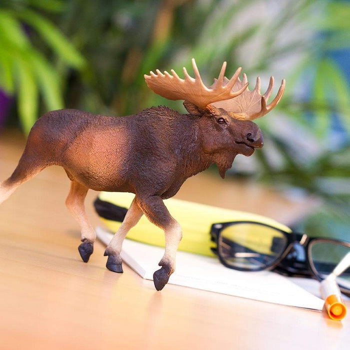 Moose - Safari Ltd®