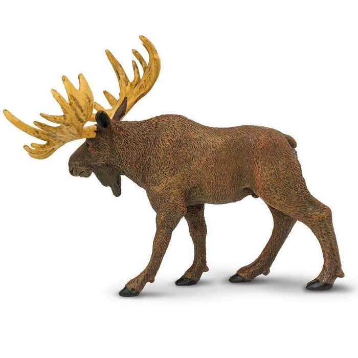 Moose Toy | Wildlife Animal Toys | Safari Ltd.