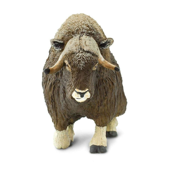 Muskox Toy | Wildlife Animal Toys | Safari Ltd.