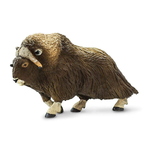 Muskox - Safari Ltd®