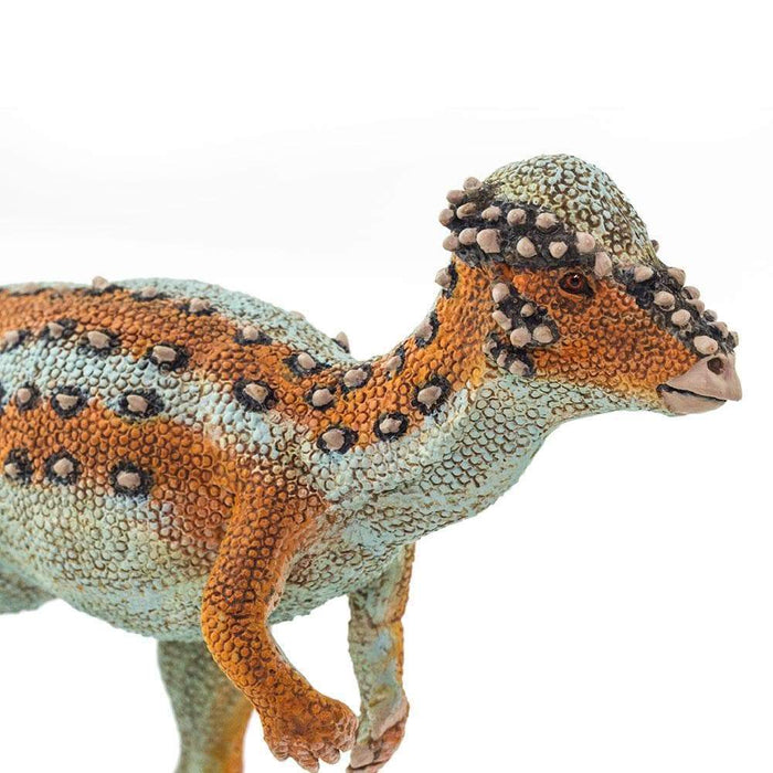 Pachycephalosaurus - Safari Ltd®