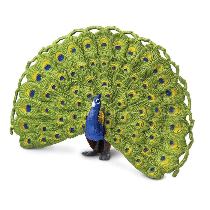 Peacock Toy | Wildlife Animal Toys | Safari Ltd.
