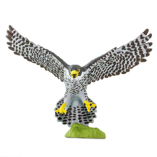 Peregrine Falcon - Safari Ltd®