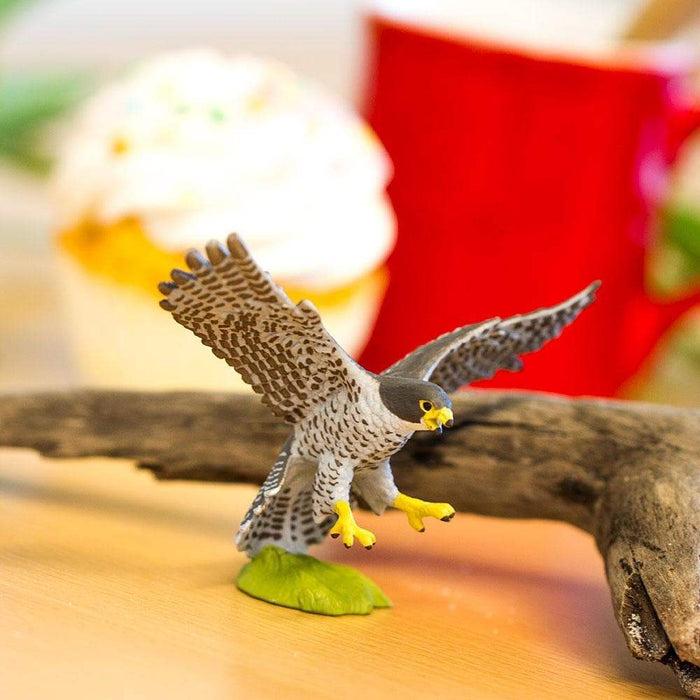 Peregrine Falcon Toy | Wildlife Animal Toys | Safari Ltd.