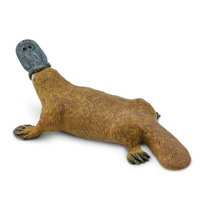 Platypus Toy | Wildlife Animal Toys | Safari Ltd.