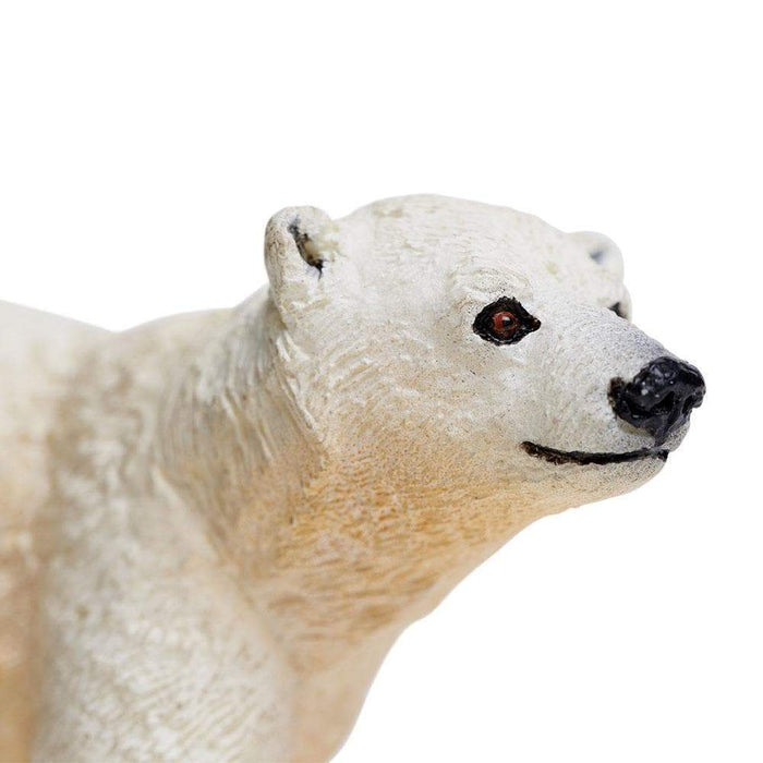 Polar Bear Cub - Safari Ltd®