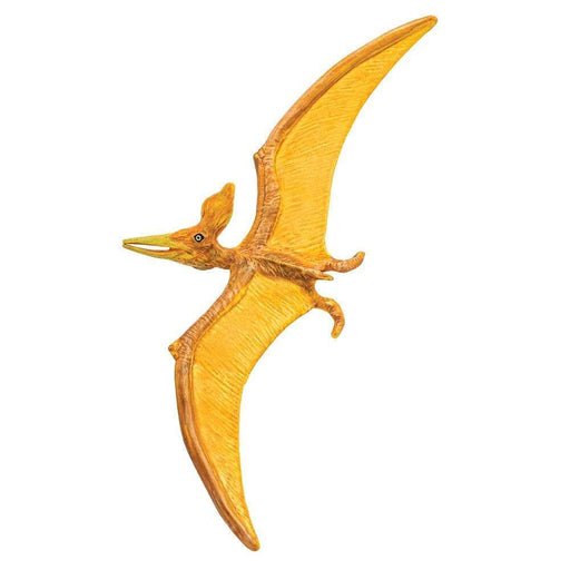 Pteranodon Toy | Dinosaur Toys | Safari Ltd.
