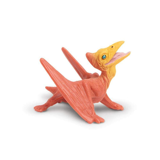 Pteranodon Baby Toy | Dinosaur Toys | Safari Ltd.