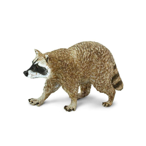Raccoon Toy | Wildlife Animal Toys | Safari Ltd.