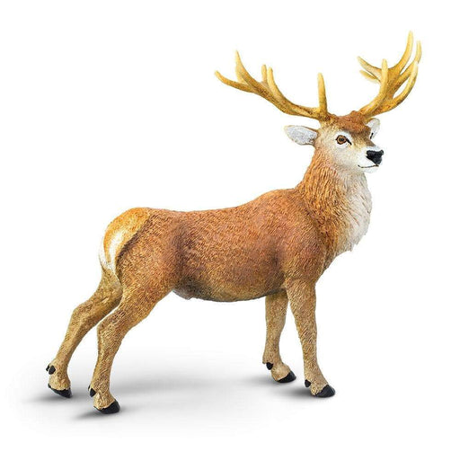 Red Deer Stag Toy | Wildlife Animal Toys | Safari Ltd.