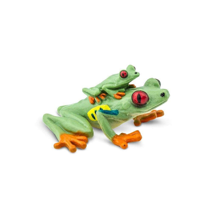 Red-eyed Tree Frog - Safari Ltd®