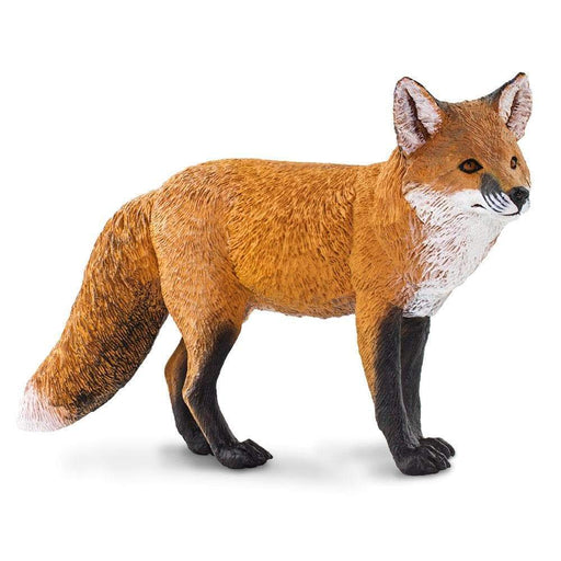 Red Fox - Safari Ltd®