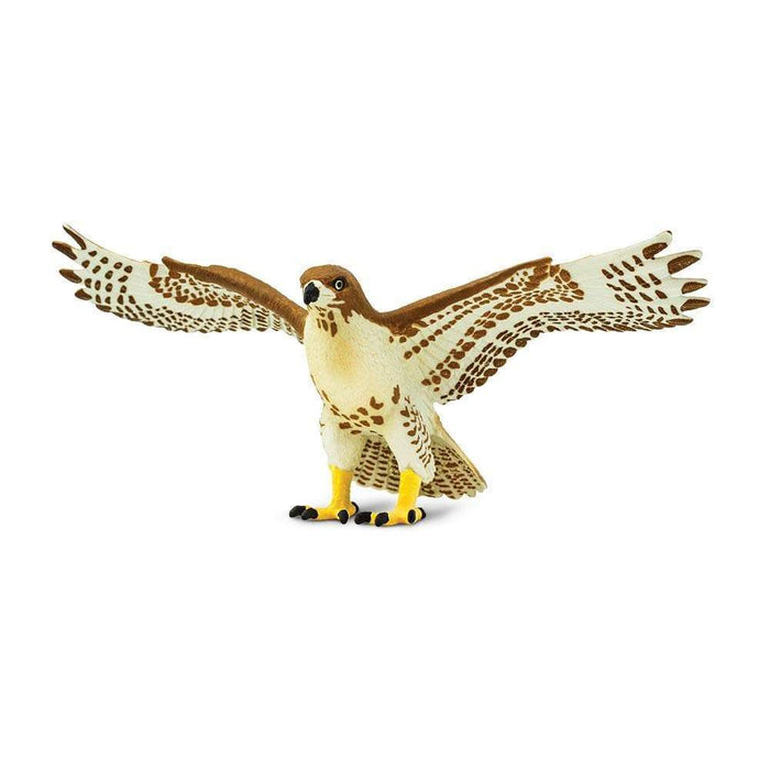 Red-Tailed Hawk - Safari Ltd®