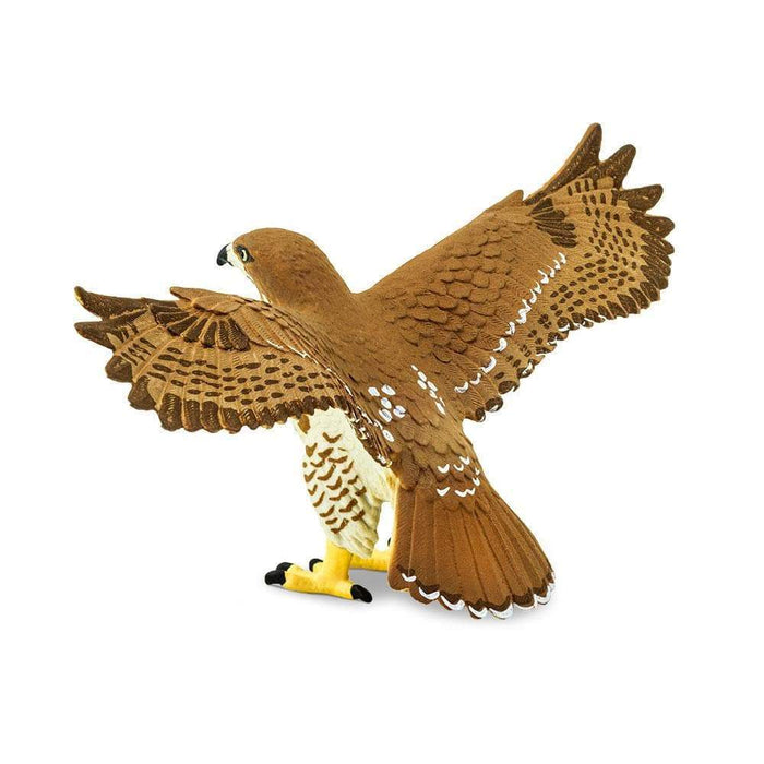 Red-Tailed Hawk Toy | Wildlife Animal Toys | Safari Ltd.