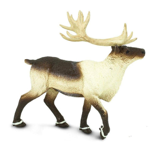 Reindeer - Safari Ltd®