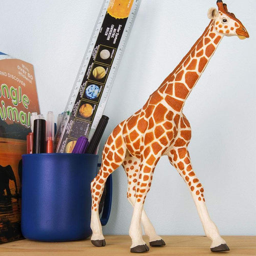 Reticulated Giraffe - Safari Ltd®