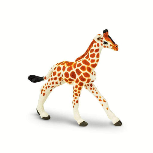 Reticulated Giraffe Baby Toy | Wildlife Animal Toys | Safari Ltd.