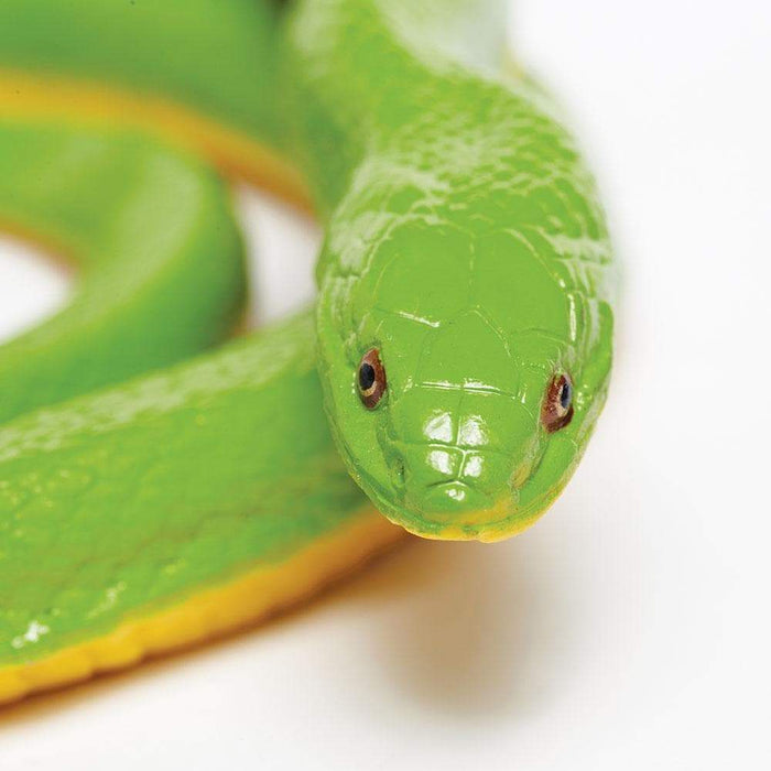 Rough Green Snake - Safari Ltd®