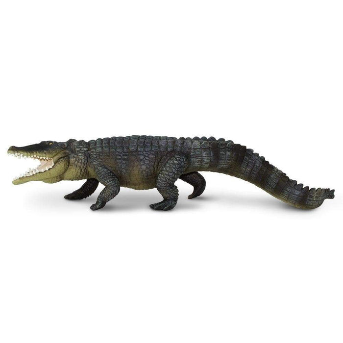 Saltwater Crocodile - Safari Ltd®