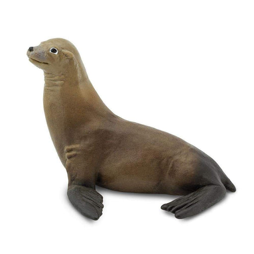 Sea Lion Toy - Sea Life Toys by Safari Ltd.