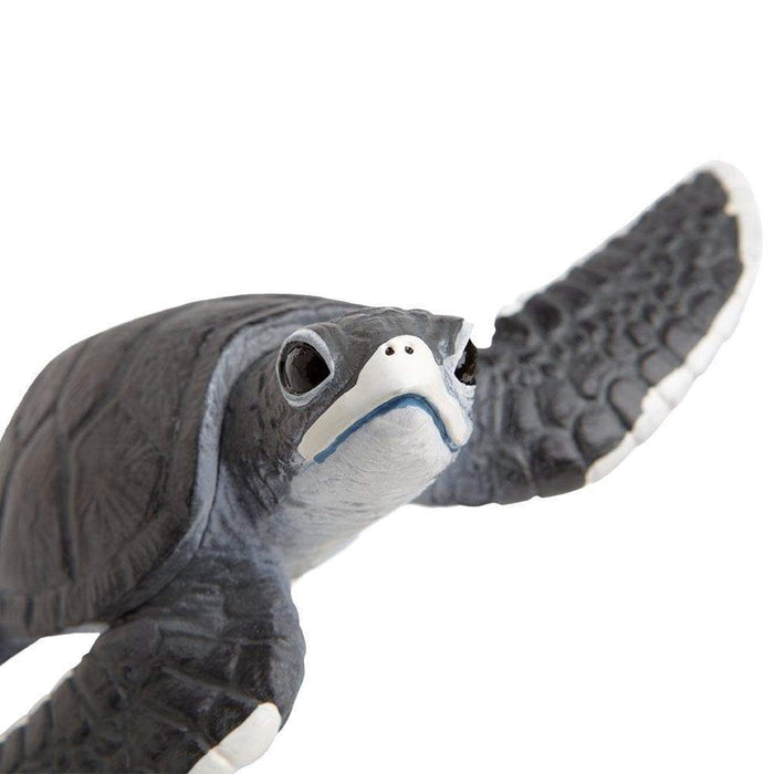 Sea Turtle Baby - Safari Ltd®