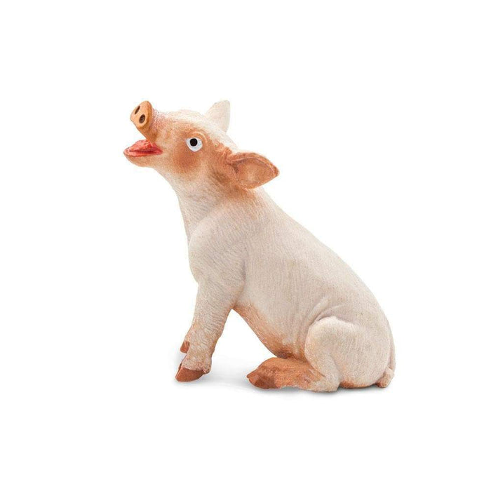 Sitting Piglet - Safari Ltd®
