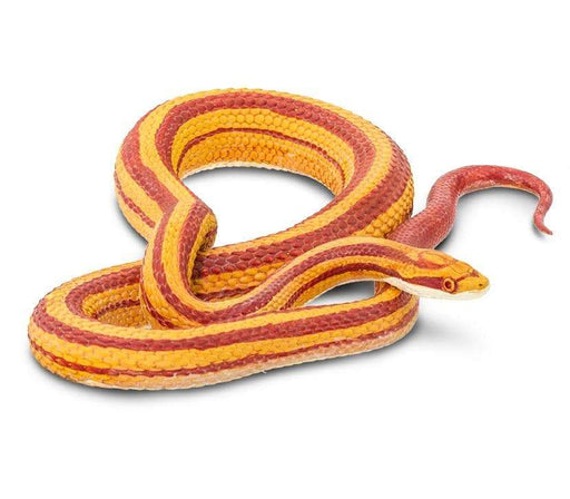 Slithery Snakes - Set of 6 Toys - Safari Ltd®