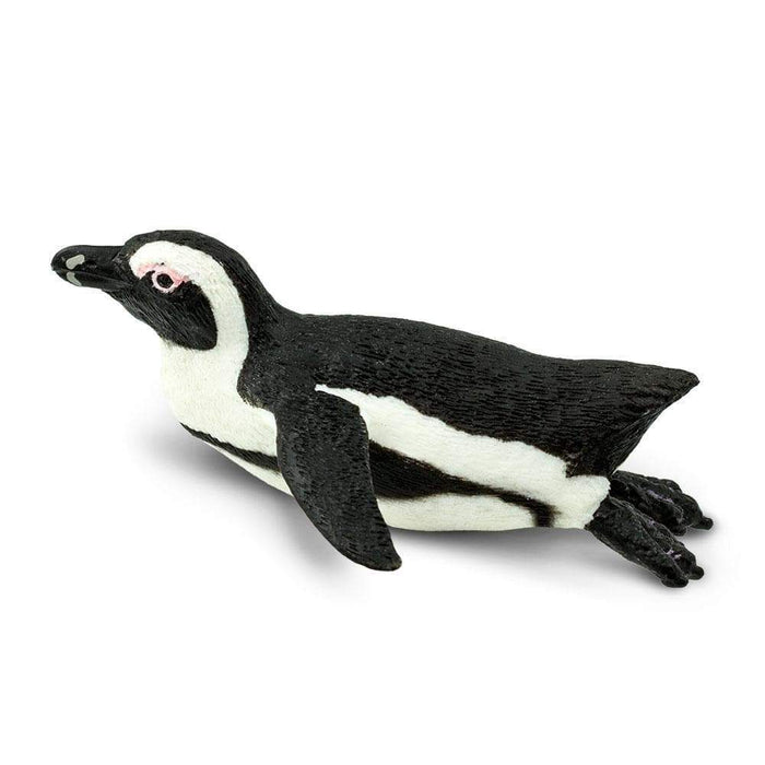 South African Penguin - Safari Ltd®