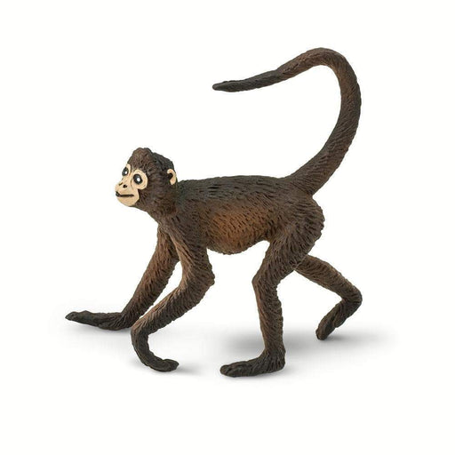 Spider Monkey - Safari Ltd®