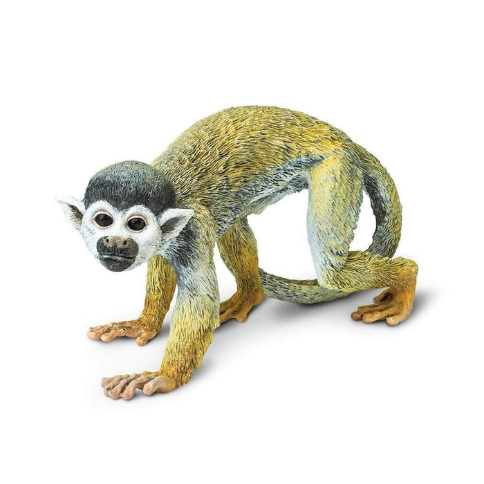 Squirrel Monkey - Safari Ltd®