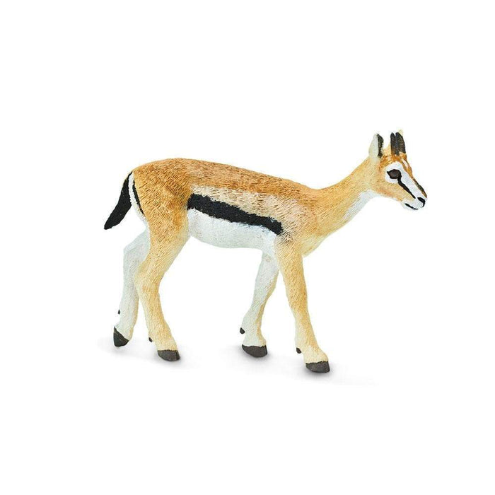 Thomson's Gazelle Toy | Wildlife Animal Toys | Safari Ltd.