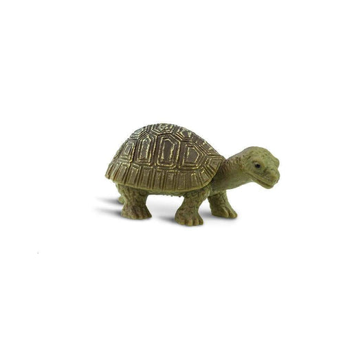 Tortoises - Good Luck Minis® - Safari Ltd®