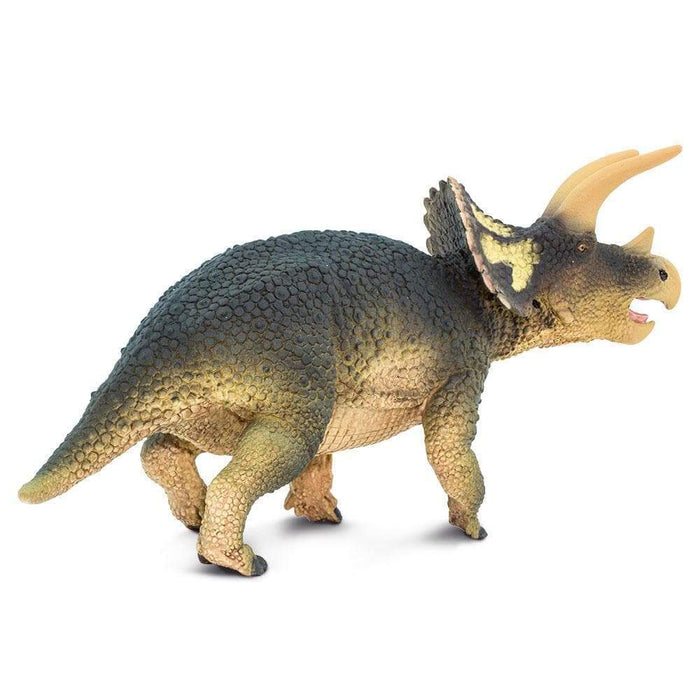 Triceratops Toy | Dinosaur Toys | Safari Ltd.