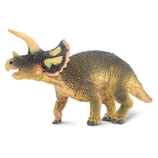 Triceratops - Safari Ltd®