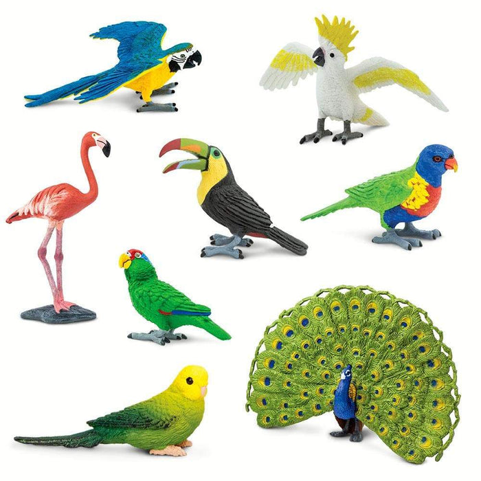 Tropical Birds Bundle - Set of 8 Toys - Safari Ltd®