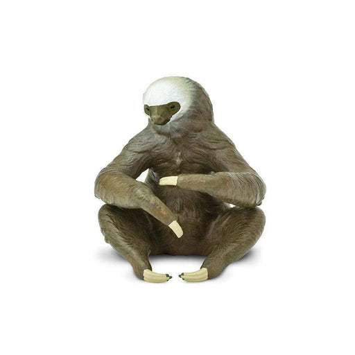 Two-Toed Sloth Toy | Wildlife Animal Toys | Safari Ltd.